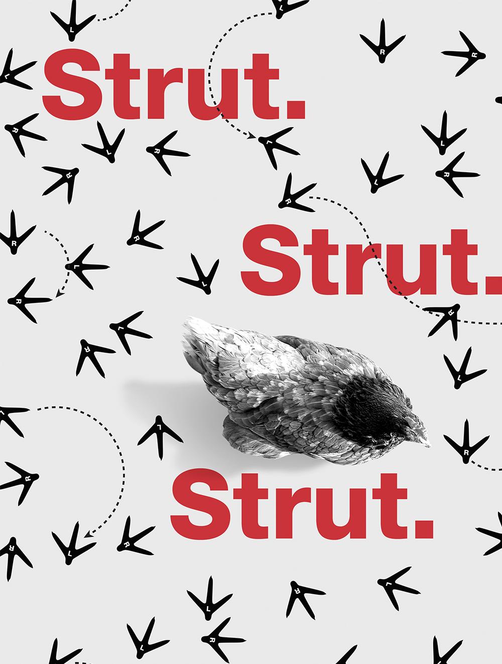 Strut. Strut. Strut.